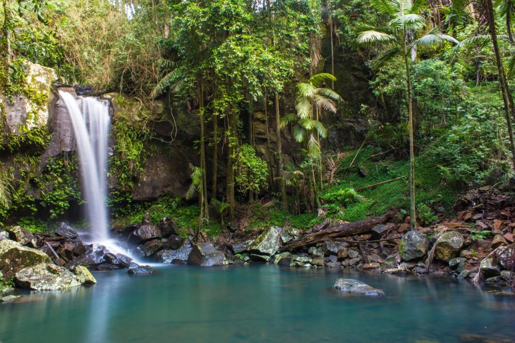 Curtis Falls, Waterfall, Mt Tamborine, landscape photography